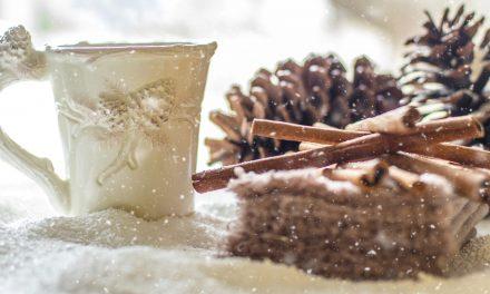 Welche Teekanne für welchen Tee?