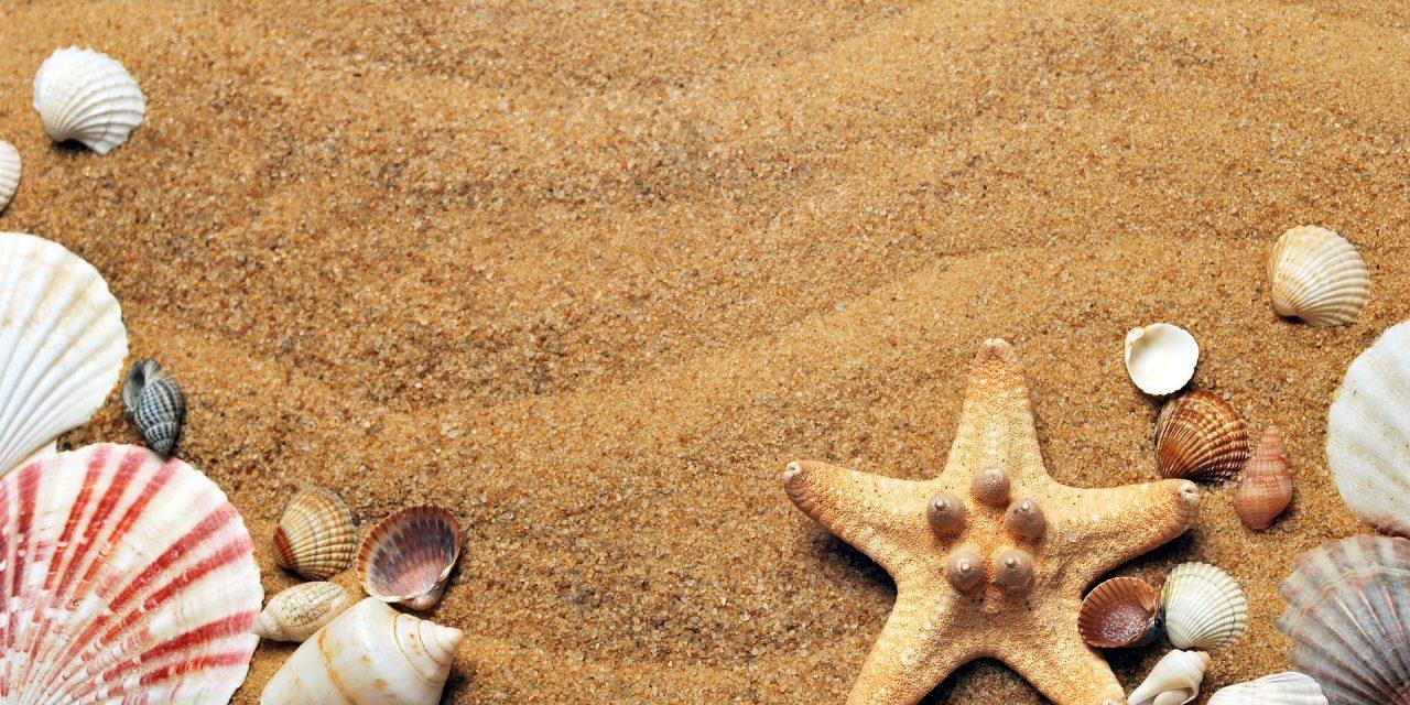 Sommerurlaub: Gadgets und Geschenke