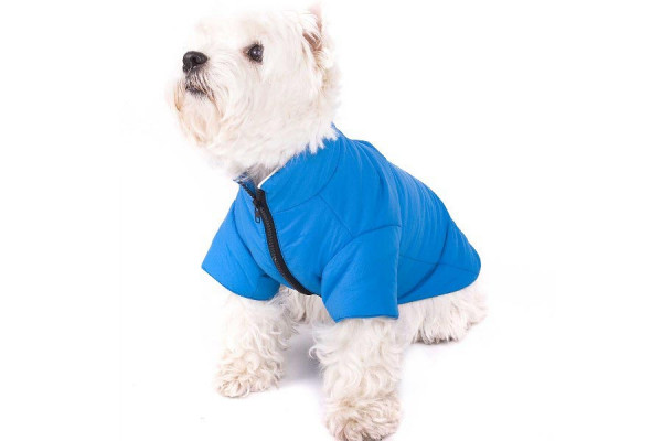 Regenjacke Regenmantel blau für Hunde