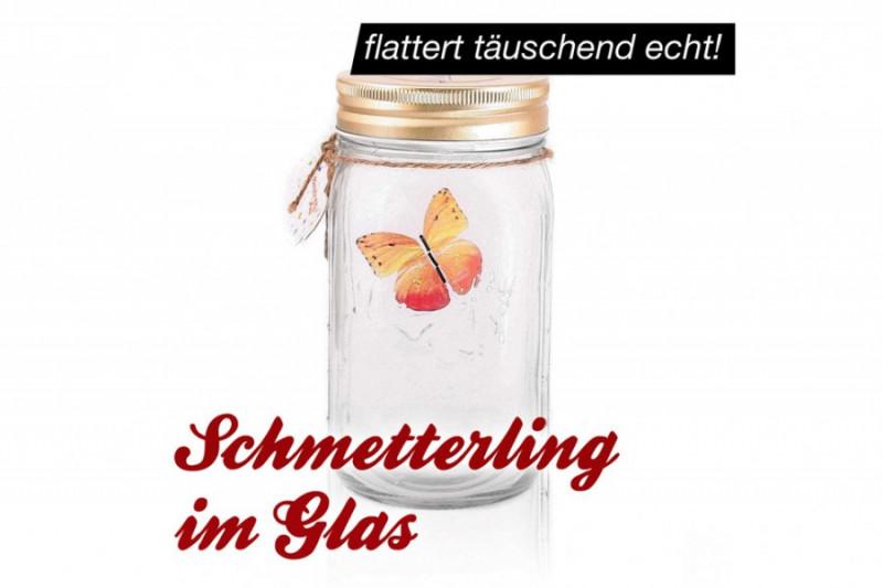 Roter Schmetterling im Glas Feuerfalter