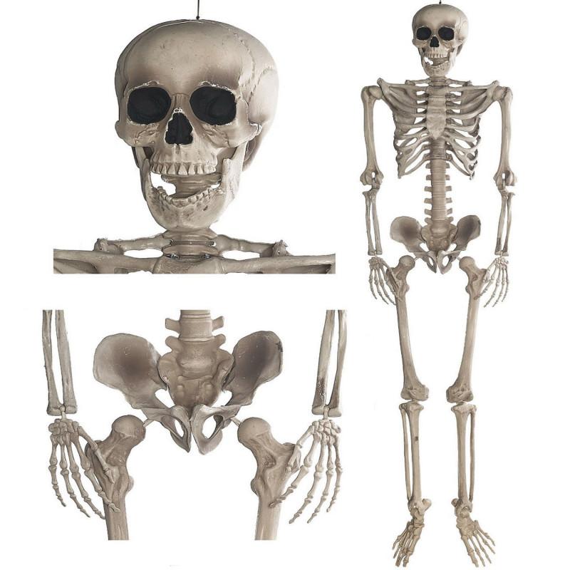 Halloween Deko Skelett 160cm