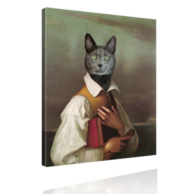 Tierportrait Katze