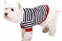 Hundepullover Pulli für Hunde » Shop » 24h » günstig kaufen!
