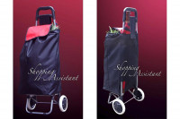 Shopping-Trolley: Einkaufswagen Modell Giselle » 24h