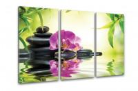 Kunstdruck Bambus & Orchidee auf Leinwand 3-teilig 120x80cm